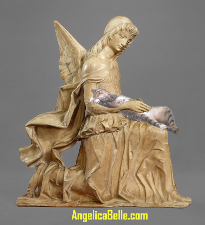 Alley Cat is getting some love from this kneeling marble angel by Giovanni Antonio Armadeo